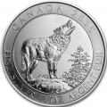 Canada loup gris 2015