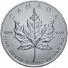 Canada maple leaf 2013