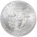 Usa silver eagle 2013 avers